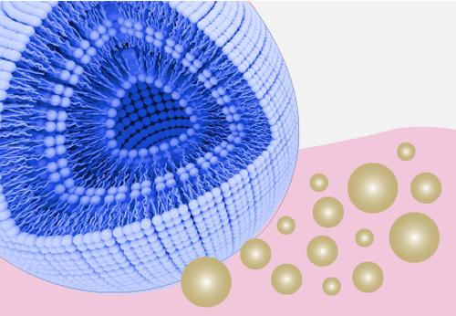 Microkapseln 2