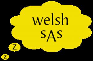 The Welsh Sleep Apnoea Society